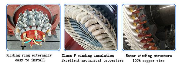 Slip Ring Induction Motor