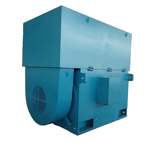 Large High Voltage Motor