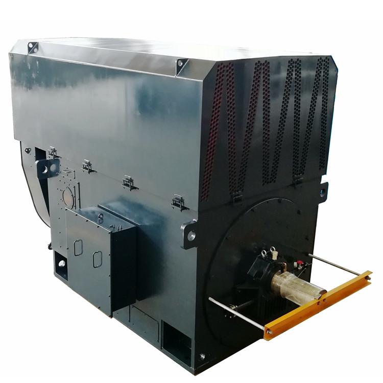 Large Electric Motor
